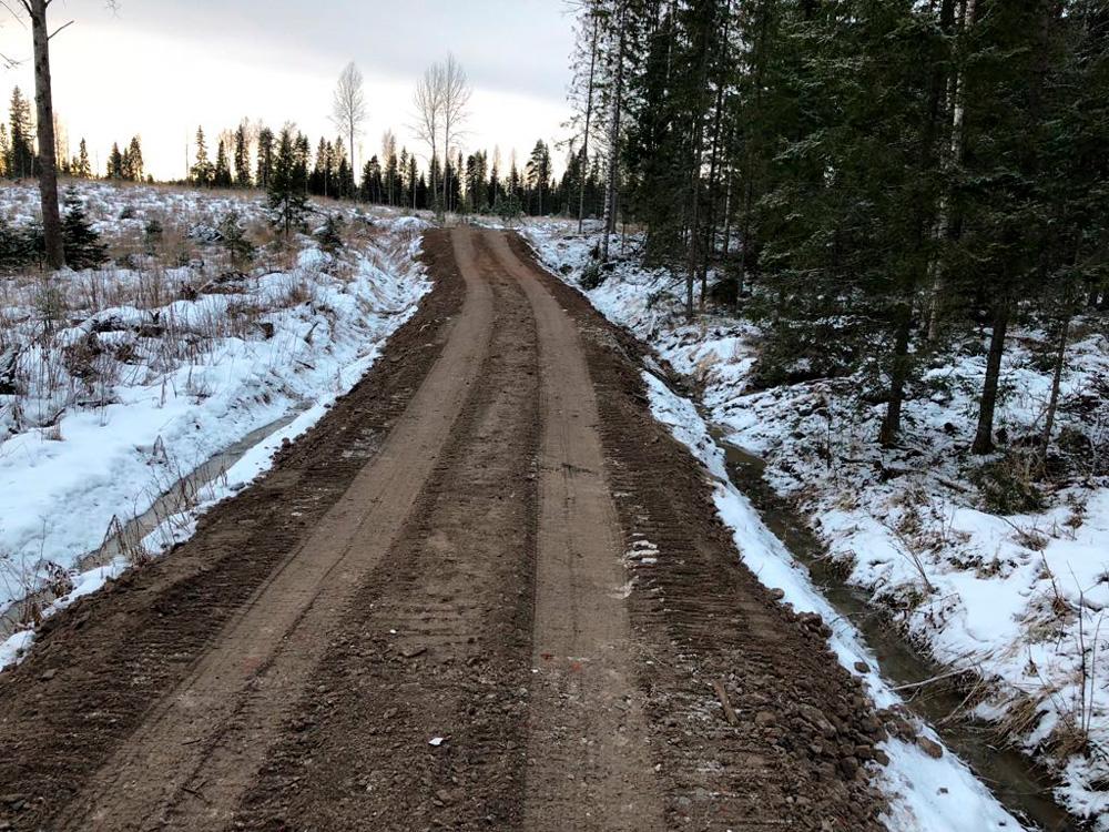 Gles Rock metsäautotien teko