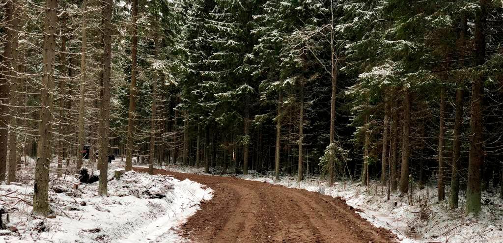 Metsäautotien rakentaminen