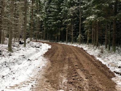 Metsäautotien teko